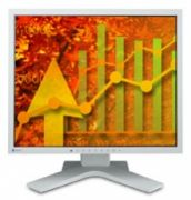 "19"" LCD Eizo FlexScan S1901 White 511665"