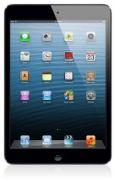Apple iPad mini 16GB WiFi Cellular Black 1126083