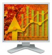 """19"""" LCD EIZO S1901 White 511665"""